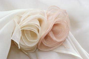 Rose in organza