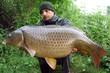 Lucky  fisherman holding a beautiful common carp