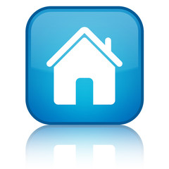 Home icon blue button