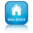 """REAL ESTATE"" Button"