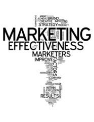 "Word Cloud ""Marketing Effectiveness"""