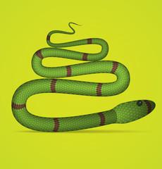 Green Vector Snake