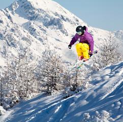 sci su neve fresca