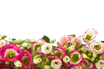 bouquet of pink flowers lisianthus