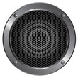 Detailed speaker icon