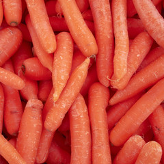 fresh carrots, food background
