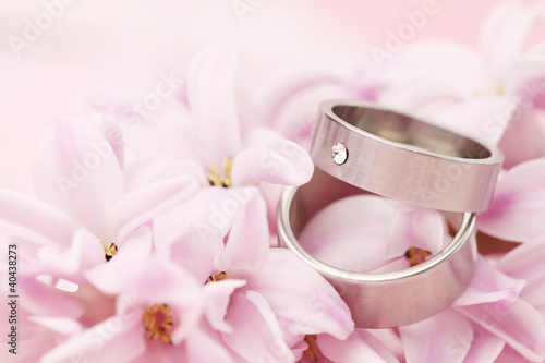 Titanium wedding rings on hyacinth