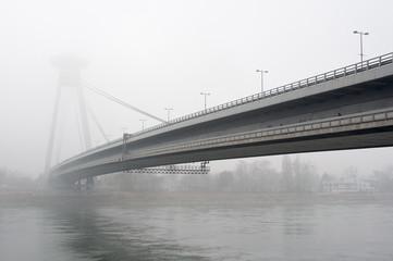 SNP Bridge