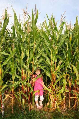 Kind im Maisfeld