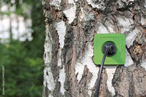 Ecological concept, symbolizing renewable energy, bio energy - 40450887