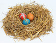 Easter eggs in a nest of straw
