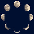 Moon phases - 40455240