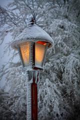 Street lamp in the winter