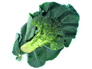 broccoli and Leaf
