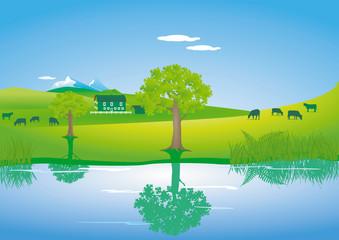 Landschaft mit Kühen am einem See