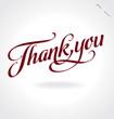 'thank you' hand lettering (vector)