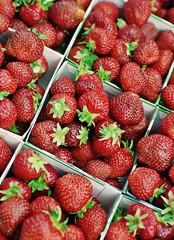 Erste Erdbeeren