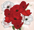 hand drawn vintage poppies composition