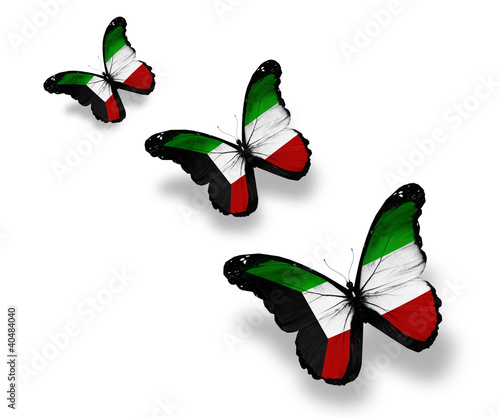 Three Kuwaiti flag butterflies, isolated on white
