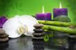 Orchidee mit Bambus auf Schieferplatte, Kerzen und Steinen