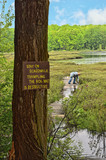 Protected Natural Bog poster