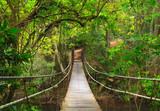 Fototapety Bridge to the jungle,Khao Yai national park,Thailand