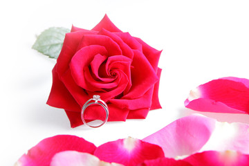 Wedding Ring in Rose
