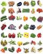 Mural de frutas y verduras