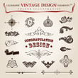 Vector set calligraphic vintage elements and page decoration, pr