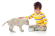 cute child playing and feeding a puppy