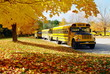 autumn school bus - 40508818