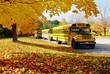 autumn school bus