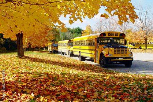 Leinwanddruck Bild autumn school bus