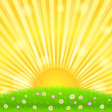 Fototapety Sunburst and green meadow with flowers