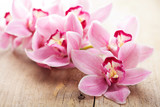 Fototapete Schön - Schönheit - Blume