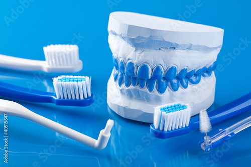 individual plaster dental molds and toothbrushes