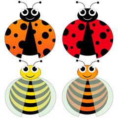 ladybug and bee