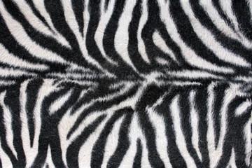 Textura de cebra