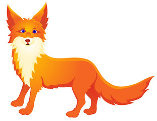 Red fox cartoon
