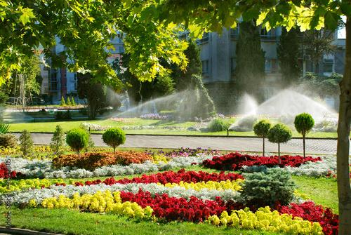Lawn watering sprinkler - 40542885