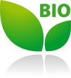 Bio Logo Grün