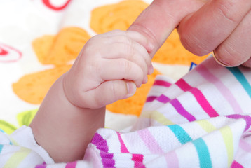 small nursery hand keeps hand a father