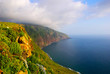Cliffs, Beautiful landscape of Madeira island, Portugal