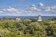 Temple maya Tikal - 40553433