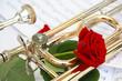rote Rose und Posaune