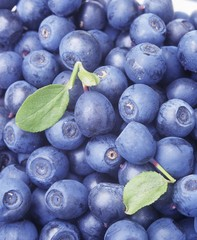 Blueberries (close-up)