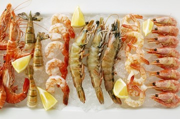 Various types of shrimps with lemons on crushed ice