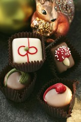 Chocolates for Christmas; squirrel