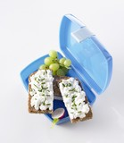 Lunch box with soft cheese sandwiches, grapes and radish