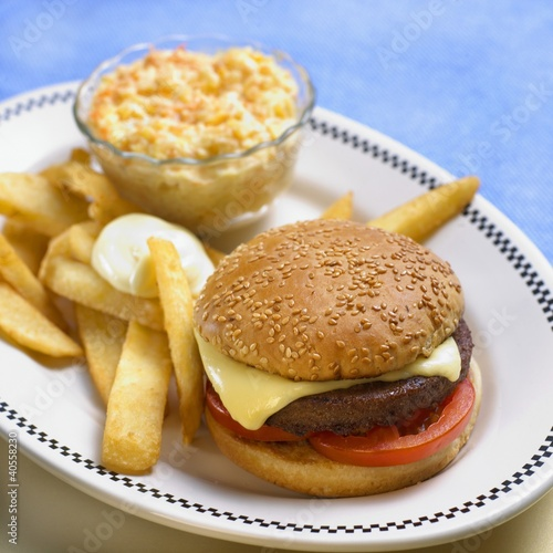 Vegetarian hamburger with chips and coleslaw